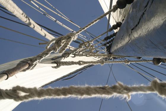 Gutschein segeln in Holland